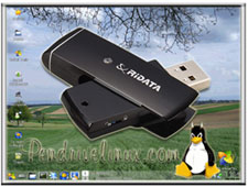 Linux on USB flash drive