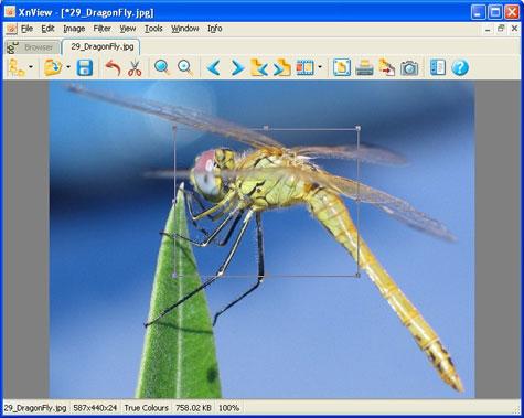 U3 graphics software